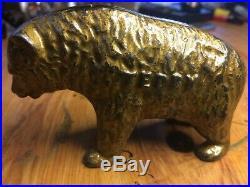 Arcade Teddy bear cast iron bank 1910-1925 era excellent condition orig. Paint