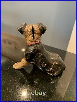 Hubley Cast Iron Boston Terrier Puppy Dog Still Coin Bank Original