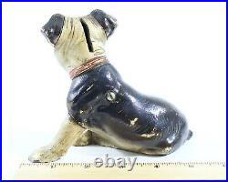 Hubley Cast Iron Boston Terrier Puppy Sitting Dog Still Coin Bank Original 6